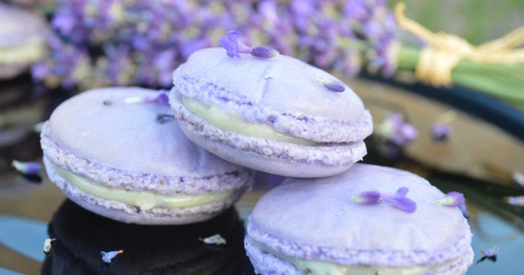 [le première recette française] Lavender Macarons